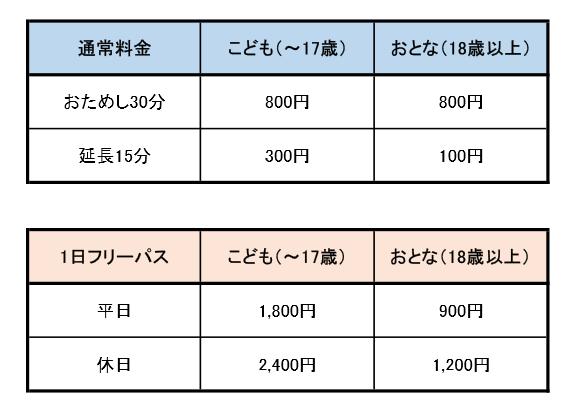 ららぽーと沼津リトルプラネット料金