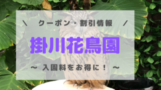 掛川花鳥園 クーポン