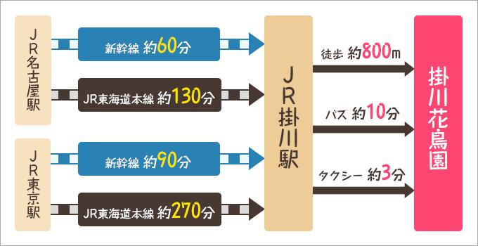掛川花鳥園電車